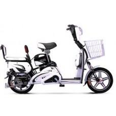 e-bike xp80